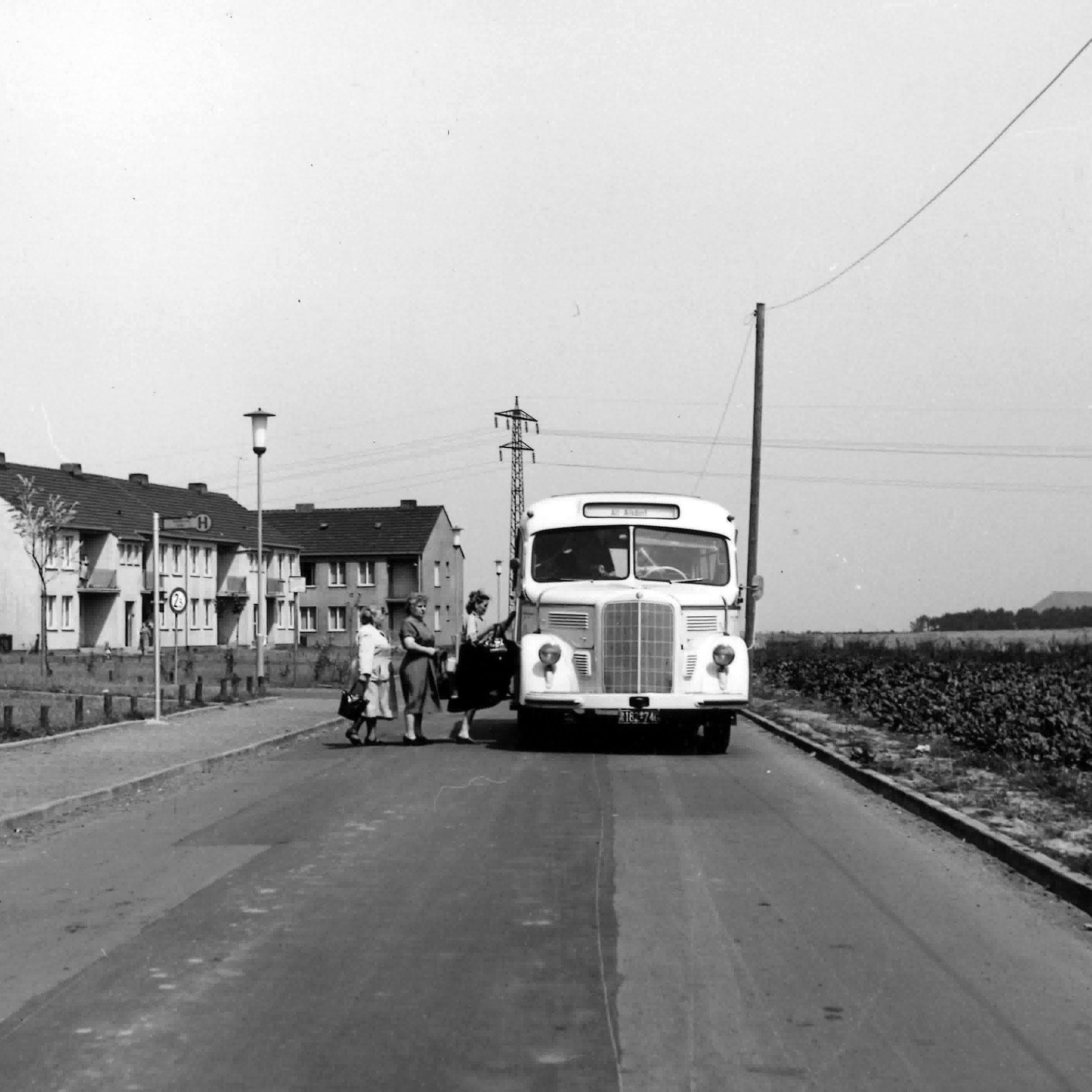 Taeter-Bus in Ofden